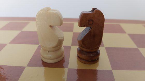 שחמט - פרשים